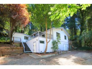 15290  Highway 9  , San Lorenzo Valley, CA 95006 (#81434013) :: RE/MAX Real Estate Services