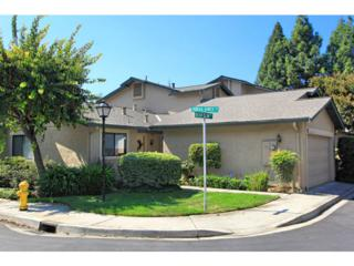 72  Bear Claw Wy  , San Jose, CA 95136 (#81434582) :: RE/MAX Real Estate Services