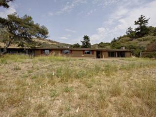 4601  La Honda Rd  , San Gregorio, CA 94074 (#ML81428520) :: Brett Jennings | KW Los Gatos Estates