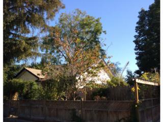 132  Dake Av  , Santa Cruz, CA 95062 (#ML81436078) :: Brett Jennings   KW Los Gatos Estates