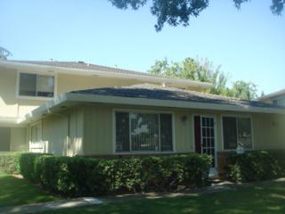 2323  Saidel Dr #4  , San Jose, CA 95124 (#ML81436459) :: Brett Jennings | KW Los Gatos Estates