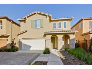 5518  Carew Wy  , San Jose, CA 95123 (#ML81438245) :: Brett Jennings | KW Los Gatos Estates