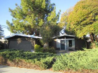 1209  Socorro Av  , Sunnyvale, CA 94089 (#ML81438727) :: RE/MAX Real Estate Services