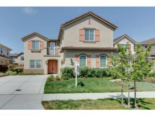 731  Torreya Av  , Sunnyvale, CA 94086 (#ML81439039) :: Brett Jennings   KW Los Gatos Estates
