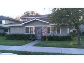 821 N Capitol Av #1  , San Jose, CA 95133 (#ML81439041) :: Brett Jennings   KW Los Gatos Estates