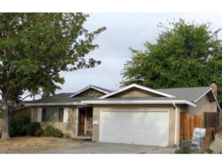 COLDWATER  Dr  , San Jose, CA 95148 (#ML81440322) :: Brett Jennings | KW Los Gatos Estates