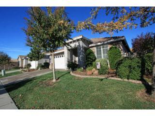 807  Michael Point Ct  , El Dorado Hills, CA 95762 (#ML81441040) :: Keller Williams - Shannon Rose Real Estate Team
