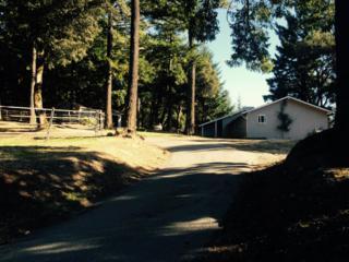 12330  1ST FORK RD  , Los Gatos Mtns, CA 95033 (#ML81441078) :: Brett Jennings | KW Los Gatos Estates