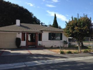 2397  Oakwood Dr  , East Palo Alto, CA 94303 (#ML81441110) :: Brett Jennings | KW Los Gatos Estates