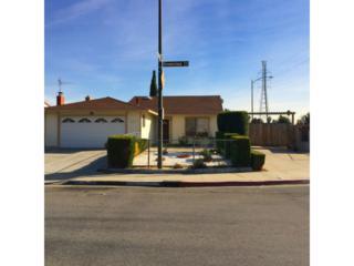 2504  Greenstone Ct  , San Jose, CA 95122 (#ML81441211) :: RE/MAX Real Estate Services