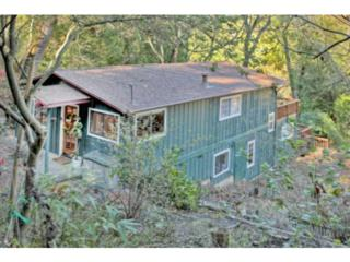 21437  Lee Dr  , Los Gatos Mtns, CA 95033 (#ML81441212) :: RE/MAX Real Estate Services