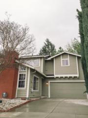 5449  Giuffrida Ct  , San Jose, CA 95123 (#ML81445064) :: RE/MAX Real Estate Services