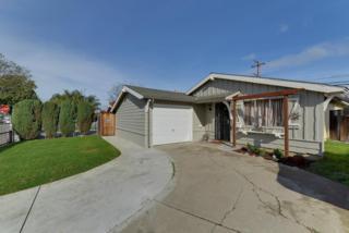 1314  Cathay Dr Dr  , San Jose, CA 95122 (#ML81445183) :: Keller Williams - Shannon Rose Real Estate Team