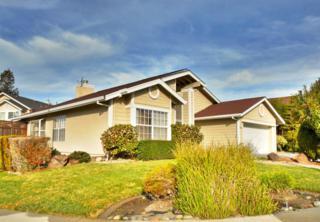 843  Salt Lake Dr  , San Jose, CA 95133 (#ML81448342) :: Keller Williams - Shannon Rose Real Estate Team