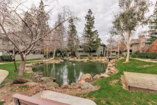 1605  La Terrace Cir  , San Jose, CA 95123 (#ML81448435) :: Brett Jennings | KW Los Gatos Estates
