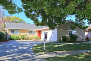 1185  Whitehall Ave  , San Jose, CA 95128 (#ML81448833) :: Keller Williams - Shannon Rose Real Estate Team