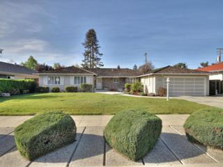 1135  Koch  , San Jose, CA 95125 (#ML81457123) :: RE/MAX Real Estate Services