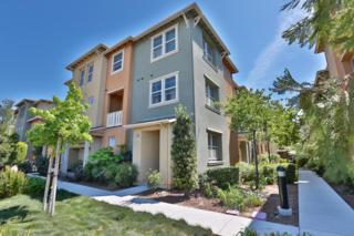 783  Modern Ice Dr  , San Jose, CA 95112 (#ML81460252) :: Brett Jennings | KW Los Gatos Estates