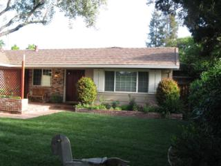 1431  Kingman Ave  , San Jose, CA 95128 (#ML81460614) :: RE/MAX Real Estate Services
