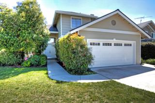 973  Jonathan Court  , Campbell, CA 95008 (#ML81461932) :: RE/MAX Real Estate Services