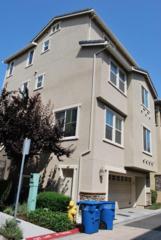 1186  Claridad Loop  , Milpitas, CA 95035 (#ML81465261) :: Brett Jennings | KW Los Gatos Estates
