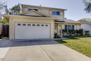 2211  Paris Way  , San Jose, CA 95132 (#ML81465285) :: Keller Williams - Shannon Rose Real Estate Team