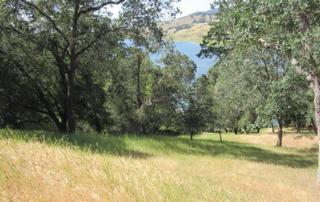 17096  Shady Lane Dr  , Morgan Hill, CA 95037 (#ML81465341) :: Brett Jennings | KW Los Gatos Estates