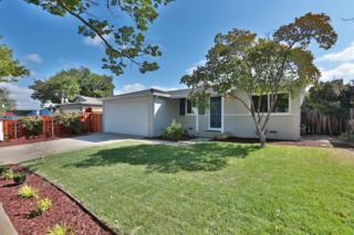 5256  Amelia Dr  , San Jose, CA 95118 (#ML81465557) :: Brett Jennings | KW Los Gatos Estates
