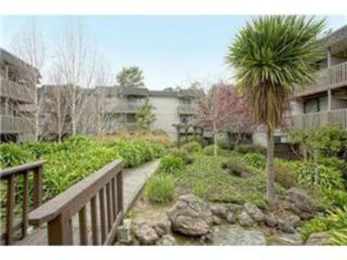 5212  Shelter Creek Ln  , San Bruno, CA 94066 (#ML81466669) :: Brett Jennings | KW Los Gatos Estates