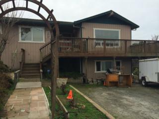 271  Treichel Ln  , East Santa Cruz County, CA 95076 (#81327705) :: Brett Jennings | KW Los Gatos Estates