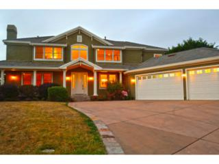 25  Spyglass Ct  , Half Moon Bay, CA 94019 (#81427395) :: Brett Jennings | KW Los Gatos Estates