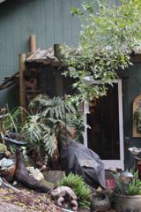 11220  Visitar St  , Felton, CA 95018 (#ML81445400) :: Brett Jennings | KW Los Gatos Estates