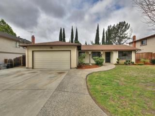 3669  Deedham Dr  , San Jose, CA 95148 (#ML81452811) :: RE/MAX Real Estate Services
