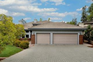10703  Rae Ln  , Cupertino, CA 95014 (#ML81465902) :: Keller Williams - Shannon Rose Real Estate Team