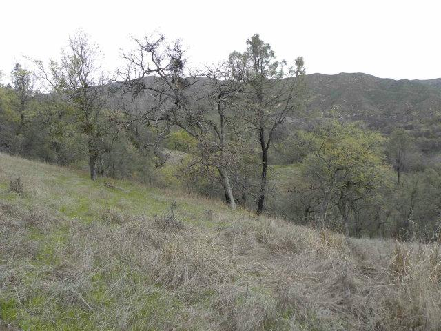 0 Av Ranch Road - Photo 2