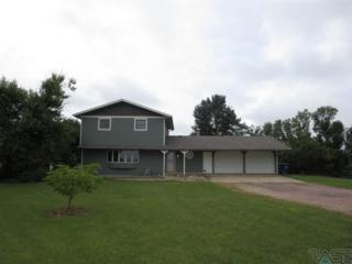 46653  272nd St  , Tea, SD 57064 (MLS #21413057) :: Peterson Goff Real Estate Experts