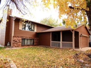 712  N Columbia Dr  , Sioux Falls, SD 57103 (MLS #21413940) :: Peterson Goff Real Estate Experts