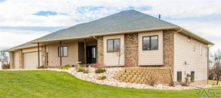 2406 E River Bluff Cir  , Sioux Falls, SD 57110 (MLS #21414547) :: Peterson Goff Real Estate Experts