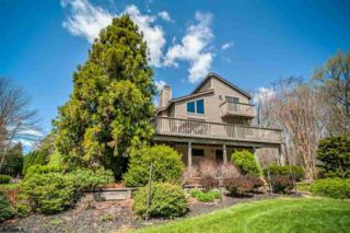 384  Stipsons Island  , Eldora, NJ 08270 (MLS #447208) :: The Ferzoco Group