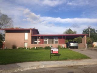 990  York Circle  , Blackfoot, ID 83221 (MLS #199184) :: Keller Williams Realty East Idaho - Mike Hicks Team