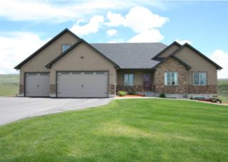 6835 S Red Bluff Lane  , Idaho Falls, ID 83406 (MLS #199156) :: Keller Williams Realty East Idaho - Mike Hicks Team
