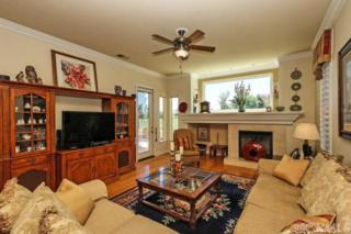 28631  Shady Brook Drive  , Menifee, CA 92584 (#SW14181924) :: Allison James Estates and Homes
