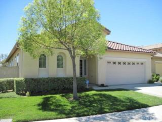 28617  Raintree Drive  , Menifee, CA 92584 (#SW14186836) :: Allison James Estates and Homes