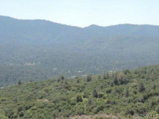 42569  Old Yosemite Road  , Oakhurst, CA 93644 (#YG14188315) :: The Brad Korb Real Estate Group