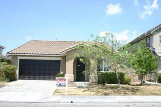 45571  Seagull Way  , Temecula, CA 92592 (#SW14189299) :: Allison James Estates and Homes