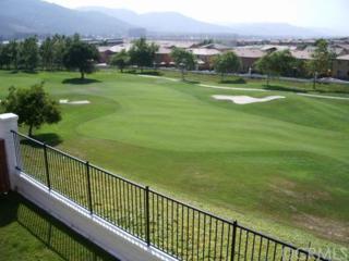 32846  Vine Street  , Temecula, CA 92592 (#SW14190546) :: Allison James Estates and Homes