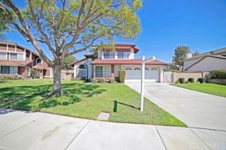 12941  Sterling Avenue  , Chino, CA 91710 (#CV14199257) :: Mainstreet Realtors®