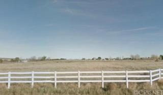 0  259th St West And Avenue B-8  , Lancaster, CA  (#SR14199883) :: The LaRoche Team