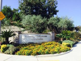 3339  Lot #6 Viewfield Ave  , Hacienda Heights, CA 91745 (#TR14204264) :: Doherty Real Estate Group