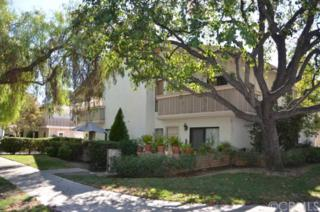 306 W 7th  , Claremont, CA 91711 (#CV14204394) :: Re/Max Masters